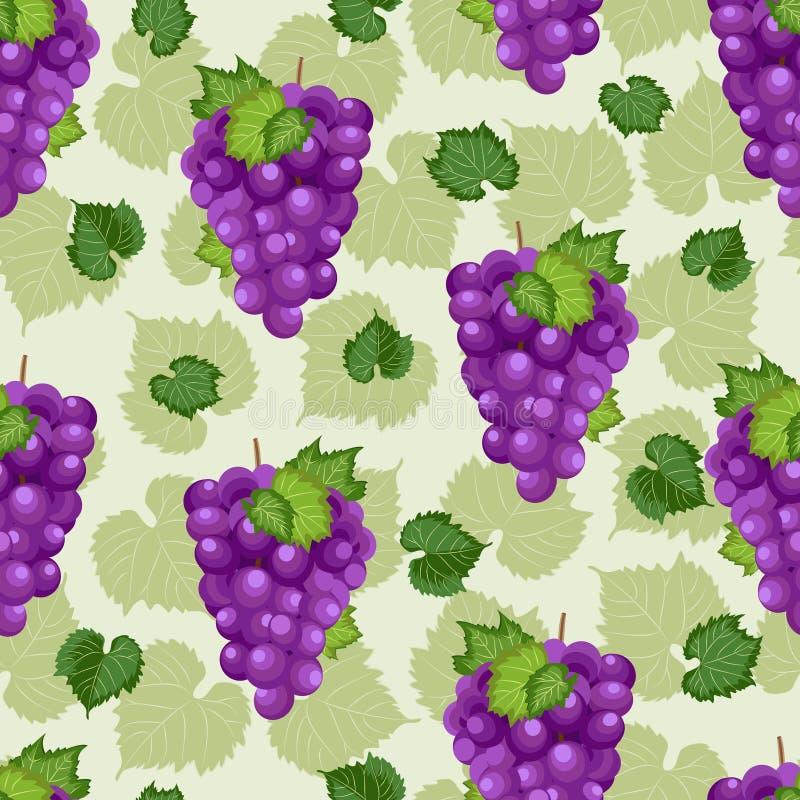 Nahtloses Muster des Traubenbündels auf grünem Hintergrund mit Blättern und Skizze, neues biologisches Lebensmittel, purpurrotes  vektor abbildung
