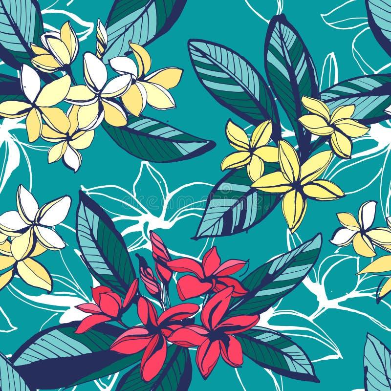 Nahtloses Muster des tropischen Blumensommers mit Plumeria blüht wi lizenzfreie abbildung