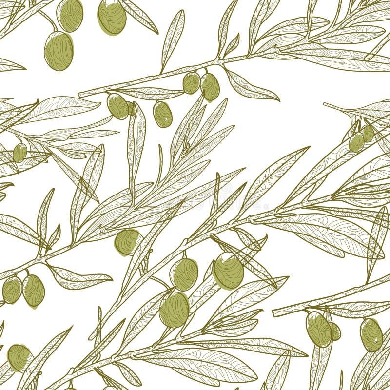 Nahtloses Muster des Vektorölzweigs Grüner weißer Hintergrund mit Hand gezeichneten Skizzenoliven vektor abbildung