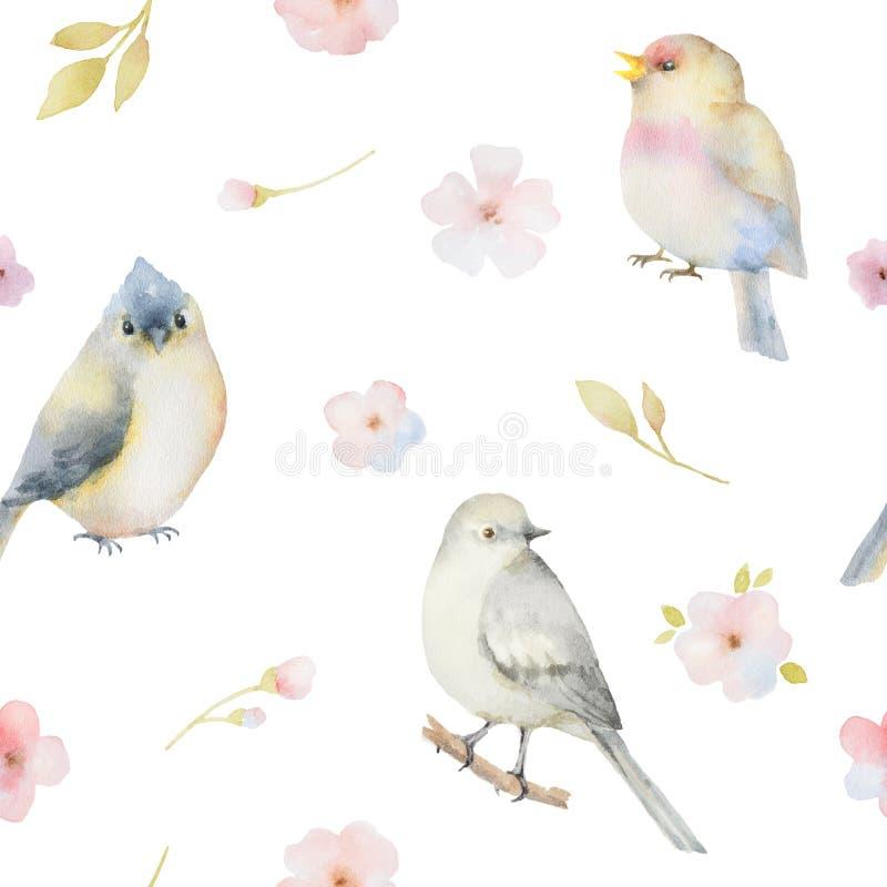 Nahtloses Muster des Vogel- und Frühlingsblumenaquarells vektor abbildung