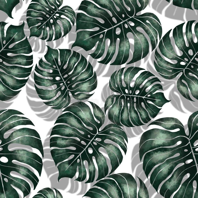 Nahtloses Muster Dschungel monstera Blattes lizenzfreie abbildung
