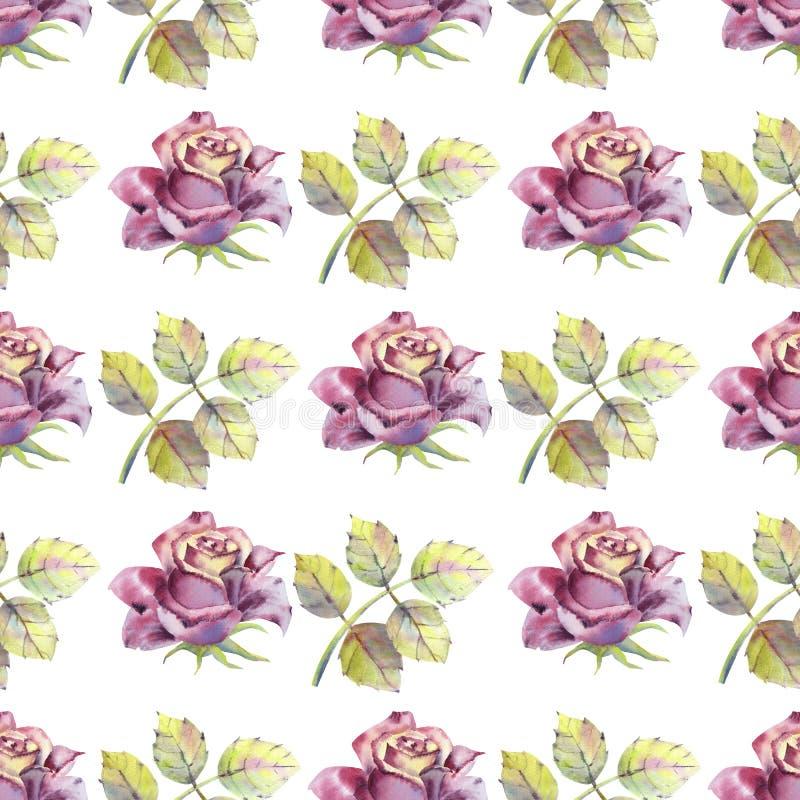 Nahtloses Muster Dunkle rosafarbene Blumen, gr?ne Bl?tter Blumenplakat, Einladung Aquarellzusammensetzungen stock abbildung
