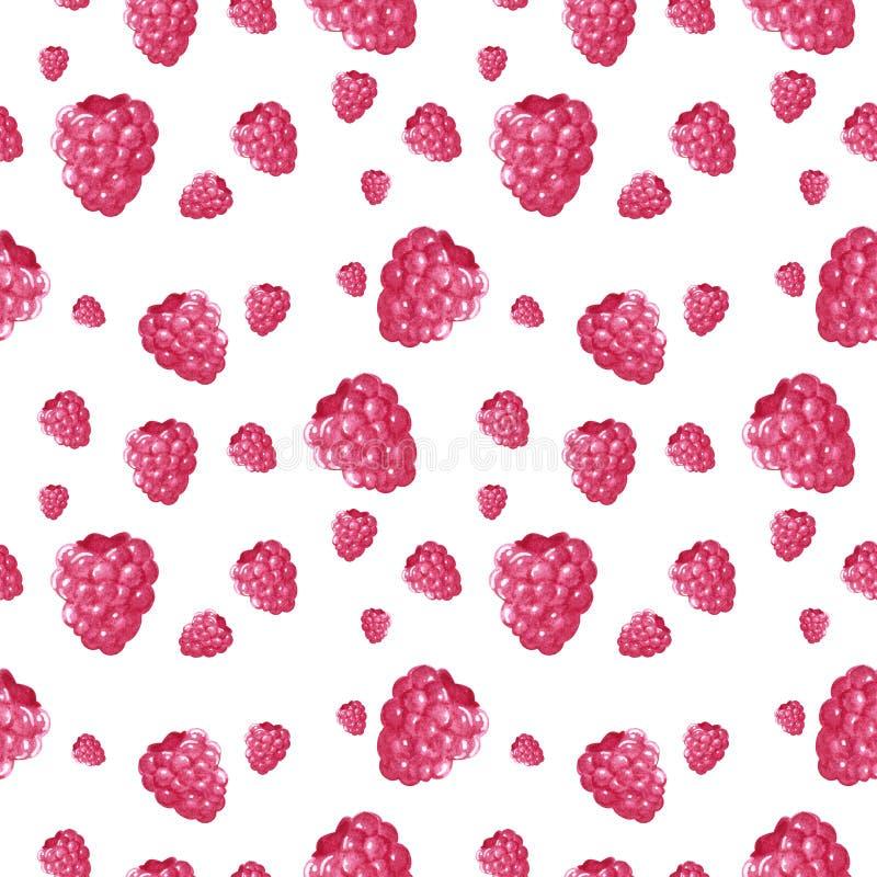 Nahtloses Muster, gemacht von den rosa süßen Himbeeren, Handgezogene botanische Illustration vektor abbildung