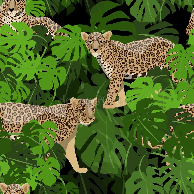 Nahtloses Muster Jaguare oder Leoparden in den tropischen Bl?ttern der Monstera-Anlage lizenzfreie abbildung