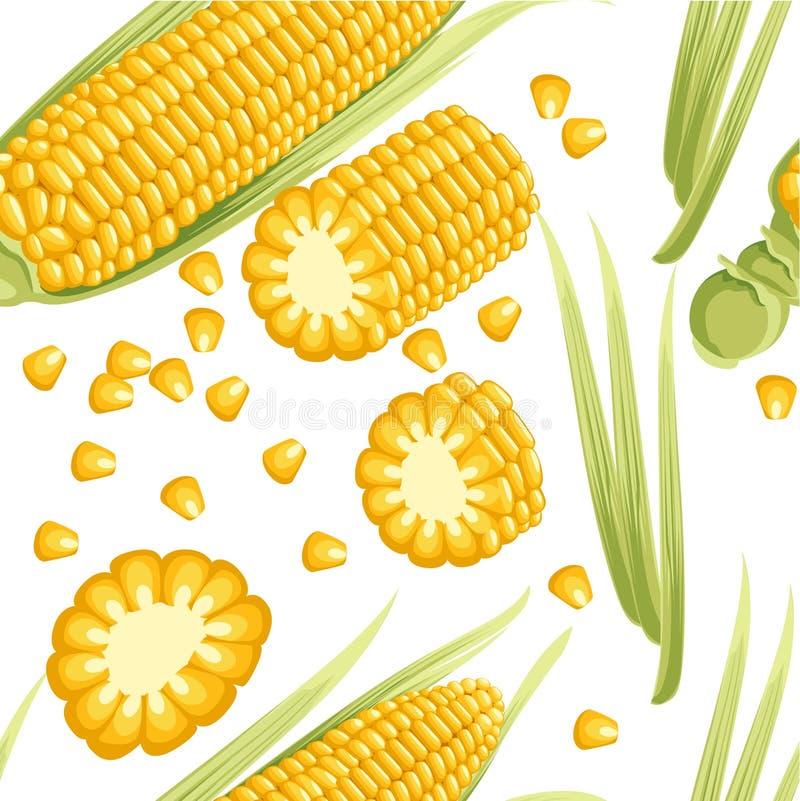 Nahtloses Muster Mais mit leavesÑ flacher Schärfentiefe Maiskolben mit getrennten Samen Flache Vektorillustration auf weißem Hint stockfoto