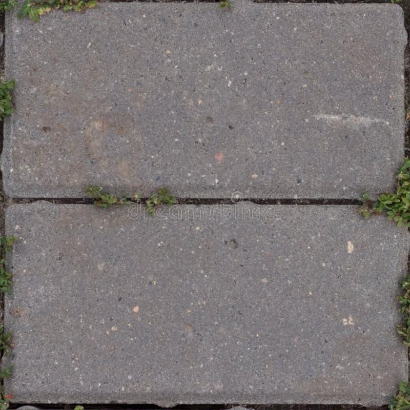 Nahtloses Muster mit alter Straßenfliese mit Gras stockfotografie