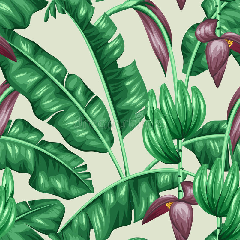 Nahtloses Muster mit Bananenblättern Dekoratives Bild des tropischen Laubs, der Blumen und der Früchte Hintergrund außen gemacht vektor abbildung