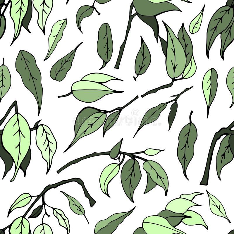 Nahtloses Muster mit Blättern des Ficus Benjamin stock abbildung