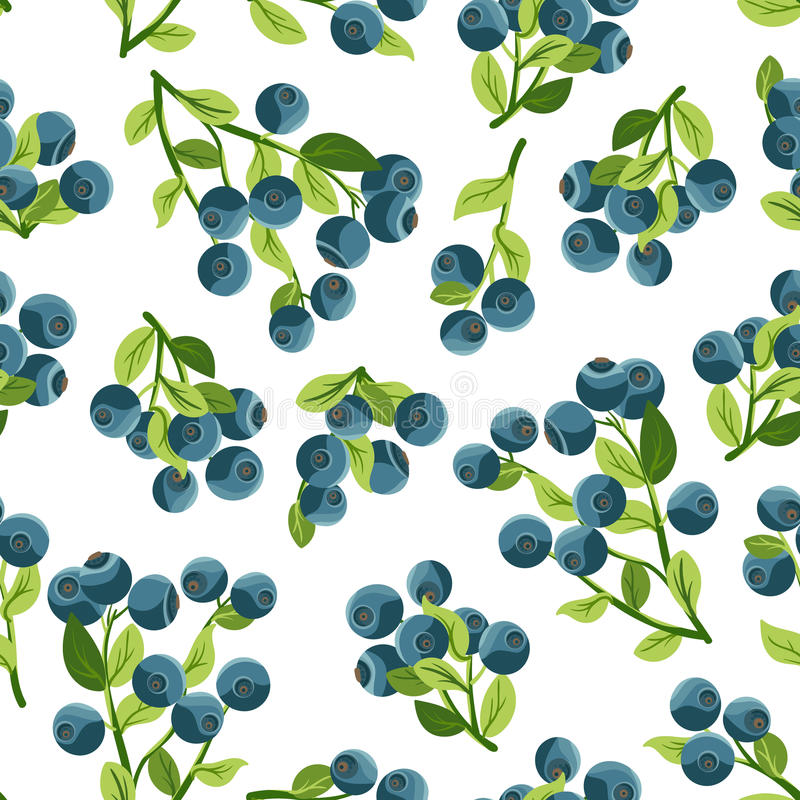 Nahtloses Muster mit Blaubeeren lizenzfreie abbildung