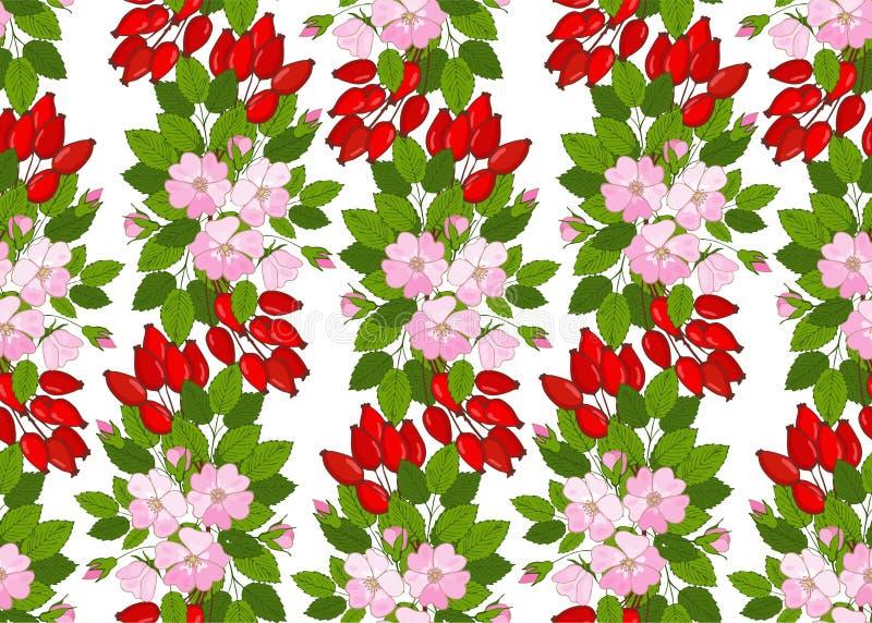 Nahtloses Muster mit Blumen und Beeren dogrose Blumenhintergrund mit wildem stieg stock abbildung