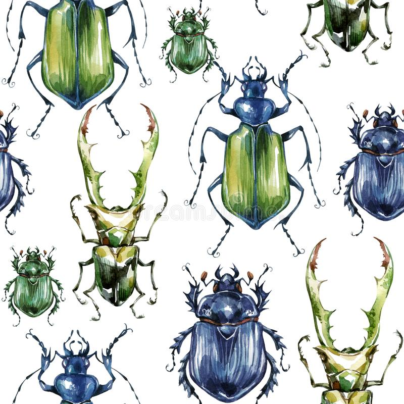 Nahtloses Muster mit bunten Käfern Sommer- und Frühlingshintergrund, Aquarellillustration entomologie Satz der wild lebenden Tier vektor abbildung