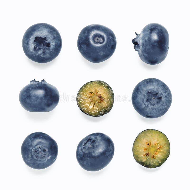 Nahtloses Muster mit der Blaubeere, lokalisiert auf Weiß lizenzfreie stockfotografie