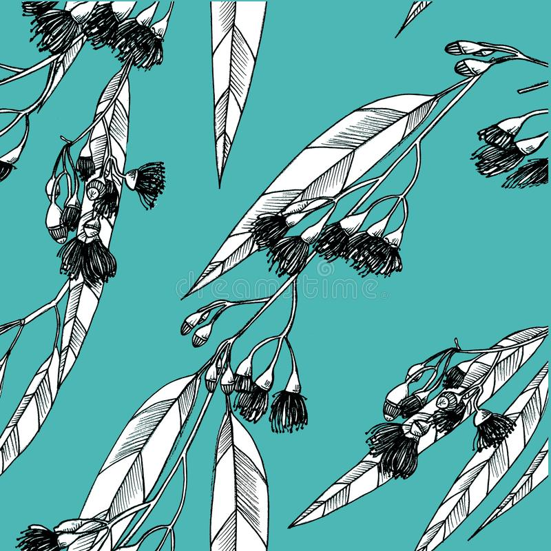 Nahtloses Muster mit eucalipts auf dem Hintergrund graphiken stock abbildung