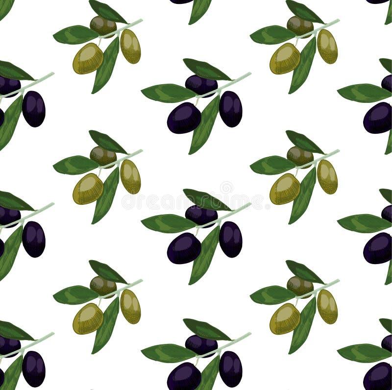 Nahtloses Muster mit farbigen Oliven Übergeben Sie gezogenen Ölzweig VEKTOR-Illustrations-, Grüne und Schwarzeoliven vektor abbildung