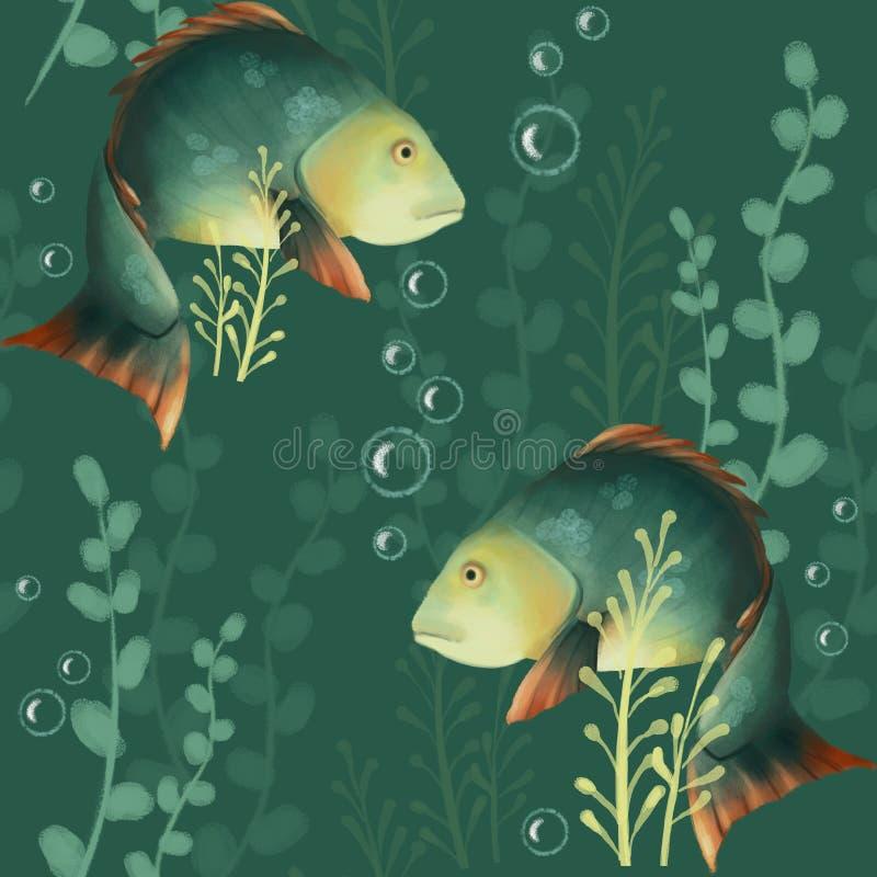 Nahtloses Muster mit Fischen Unterwasserwelt, Karausche und Algen auf einem grünen Hintergrund karpfen lizenzfreie abbildung