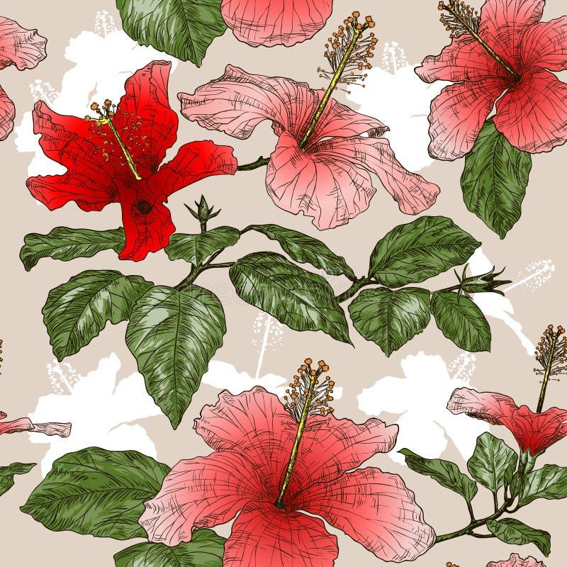 Nahtloses Muster mit Hibiscusblumen lizenzfreie abbildung