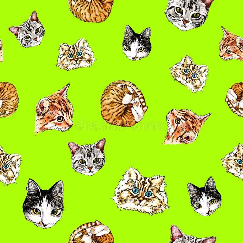 Nahtloses Muster mit Katzen auf einem lindgrünen Hintergrund vektor abbildung