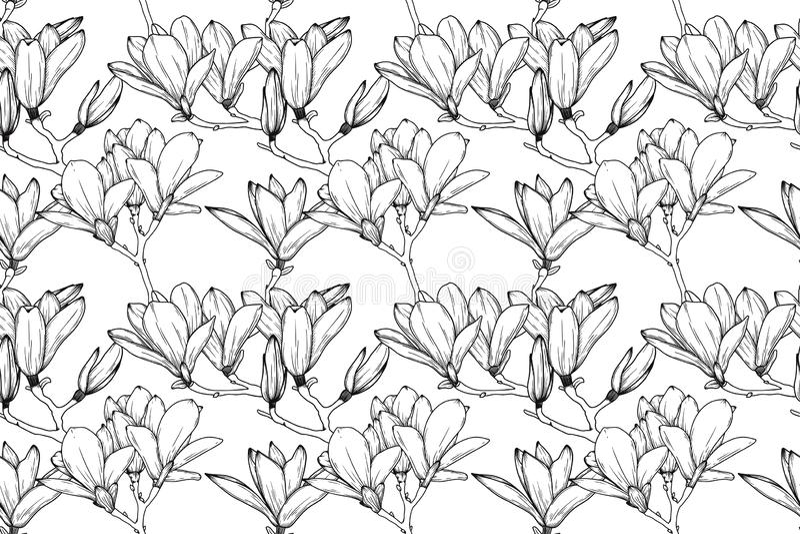Nahtloses Muster mit Lilienblumen E Vektor stockfotografie