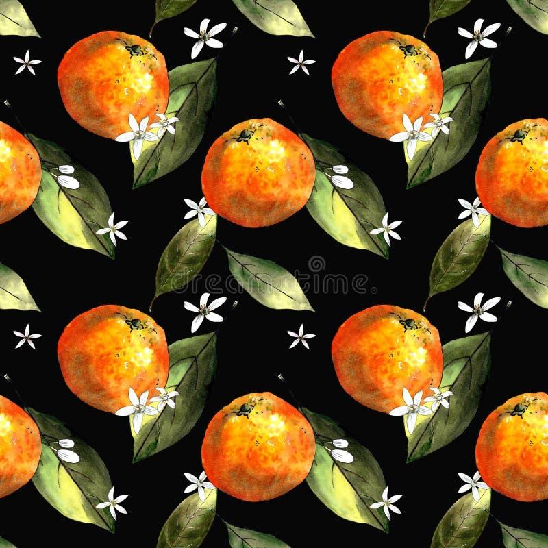 Nahtloses Muster mit Mandarinen, Blättern und Blumen auf schwarzem Hintergrund Zeichnungsmarkierungen lizenzfreies stockfoto