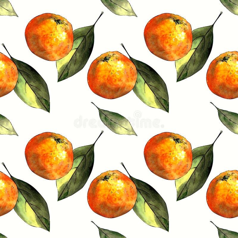 Nahtloses Muster mit Mandarinen und Blättern auf weißem Hintergrund Zeichnungsmarkierungen stockfotos
