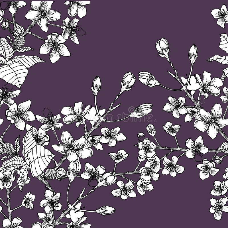 Nahtloses Muster mit Niederlassung von Kirschblüte lizenzfreie abbildung