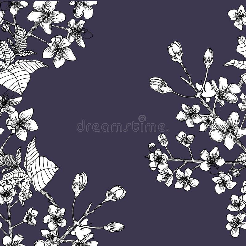 Nahtloses Muster mit Niederlassung von Kirschblüte stock abbildung