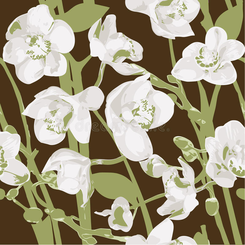 Nahtloses Muster mit Orchideen lizenzfreie abbildung