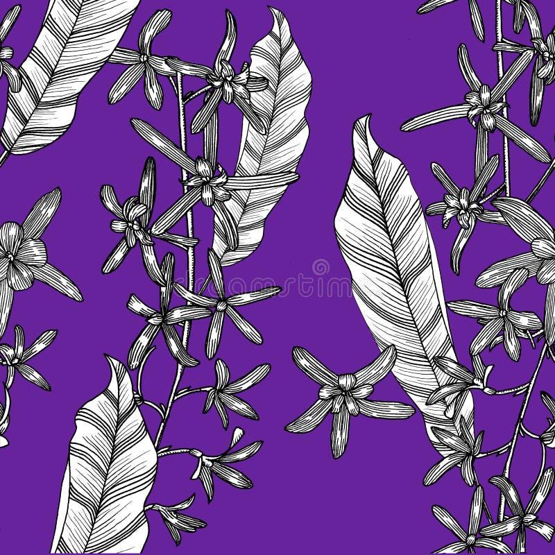 Nahtloses Muster mit petrea Hand gezeichnet graphiken stock abbildung