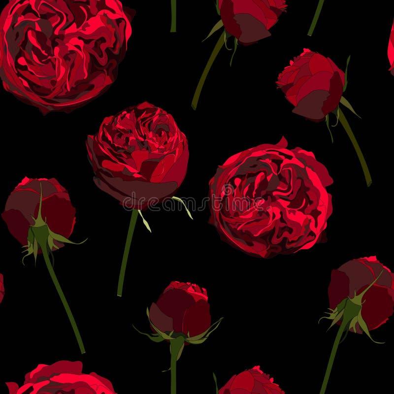 Nahtloses Muster mit Pfingstrose der roten Rosen Vervollkommnen Sie für Hintergrundgrußkarten und -einladungen stock abbildung