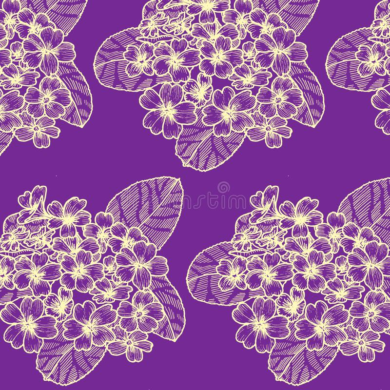 Nahtloses Muster mit Primel auf dem dunklen violetten Hintergrund lizenzfreie abbildung