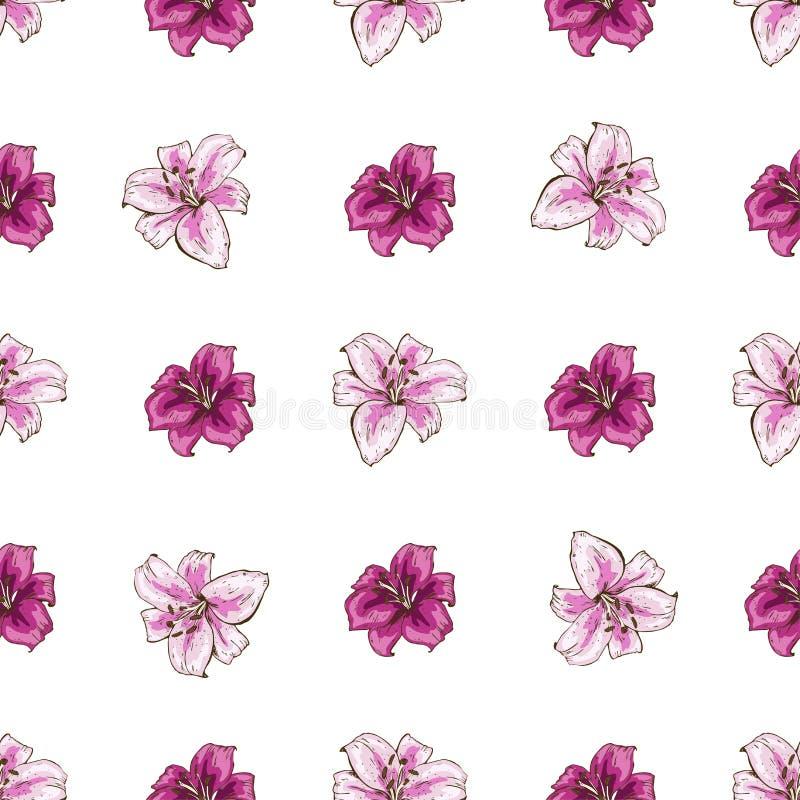 Nahtloses Muster mit rosa Lilien blühen auf weißem Hintergrund Vektorsatz des Blühens mit Blumen für Heiratseinladungen und des G lizenzfreie abbildung