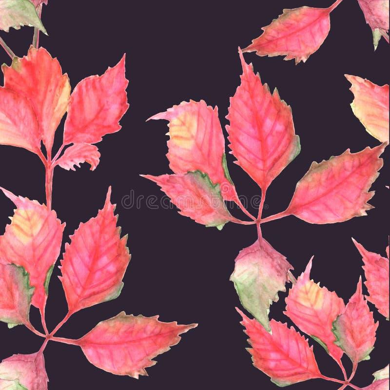 Nahtloses Muster mit roten Blättern auf dem dunklen Hintergrund watercolor vektor abbildung