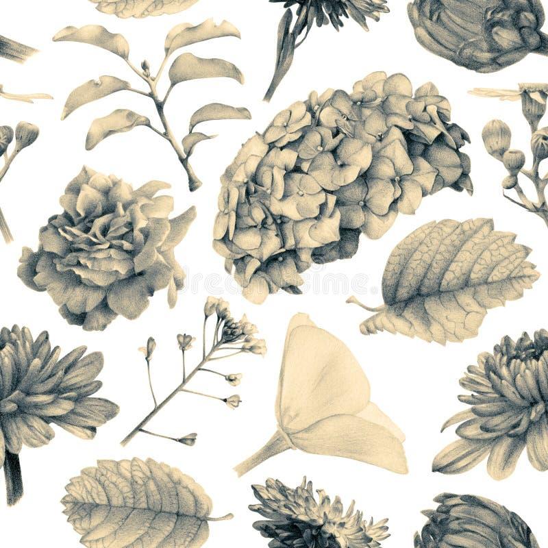 Nahtloses Muster mit schönen Frühlingsblumen und -anlagen stock abbildung