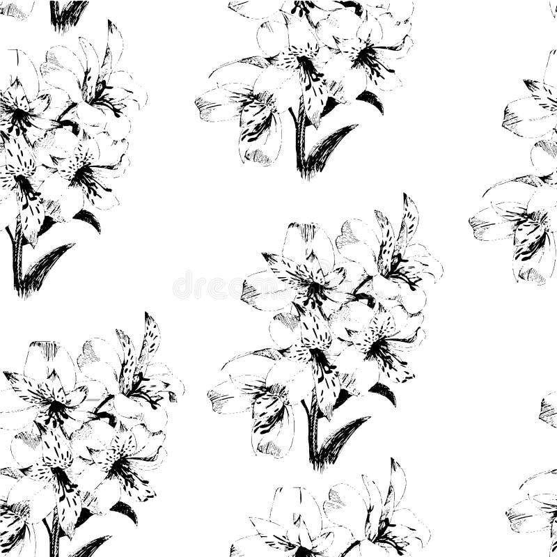 Nahtloses Muster mit Skizze Lilienblumen, Blumendekor Schwarzweiss Auch im corel abgehobenen Betrag vektor abbildung