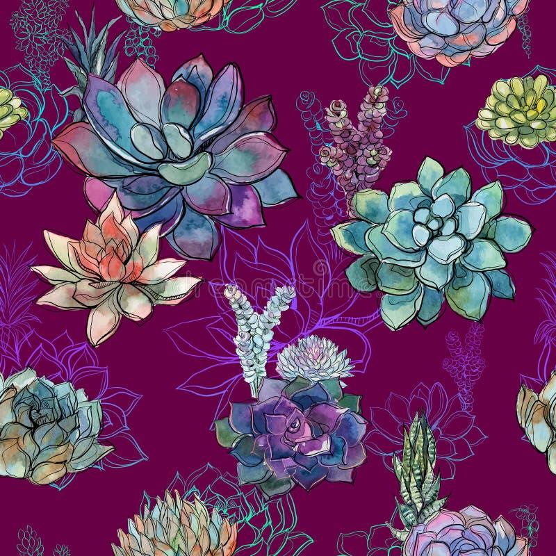 Nahtloses Muster mit Succulents auf Burgunder-Hintergrund graphiken watercolor lizenzfreie abbildung