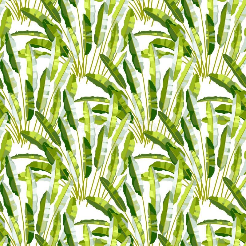 Nahtloses Muster mit tropischen Anlagen vektor abbildung