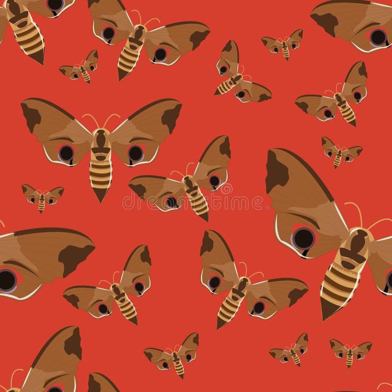 Nahtloses Muster Realistischer Schmetterlingsfalke auf einem roten Hintergrund Insekten im Vektor stock abbildung
