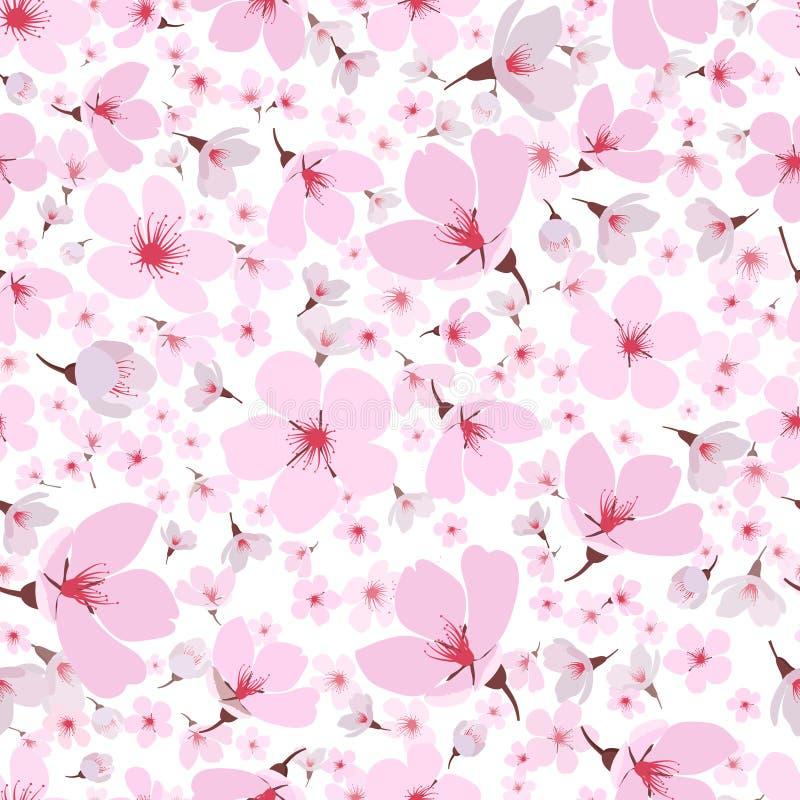 Nahtloses Muster rosa Frühling Kirschblüte-Blüte vektor abbildung