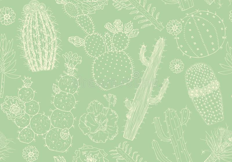 Nahtloses Muster und Blumen des Kaktus Gemütliche nette Elemente Sammlung tropische Succulents und Anlagen im Weinlesegekritzel stock abbildung