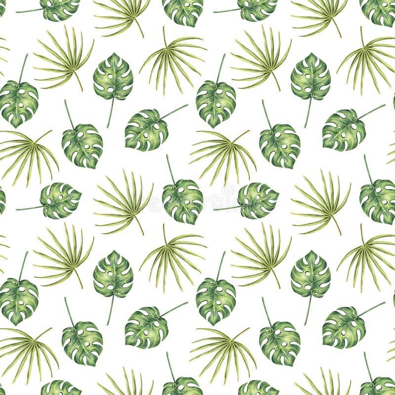Nahtloses Muster von Hand gezeichneten tropischen Palmblättern stock abbildung