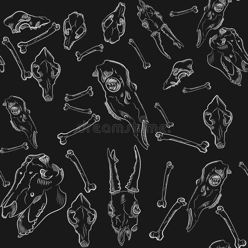 Nahtloses Muster von realistischen Schädeln von Tieren auf schwarzem Hintergrund lizenzfreie stockbilder