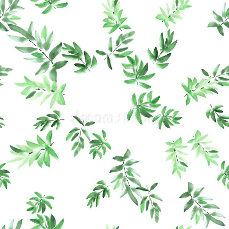 Nahtloses Mustergrün verlässt auf einem weißen Hintergrund watercolor vektor abbildung
