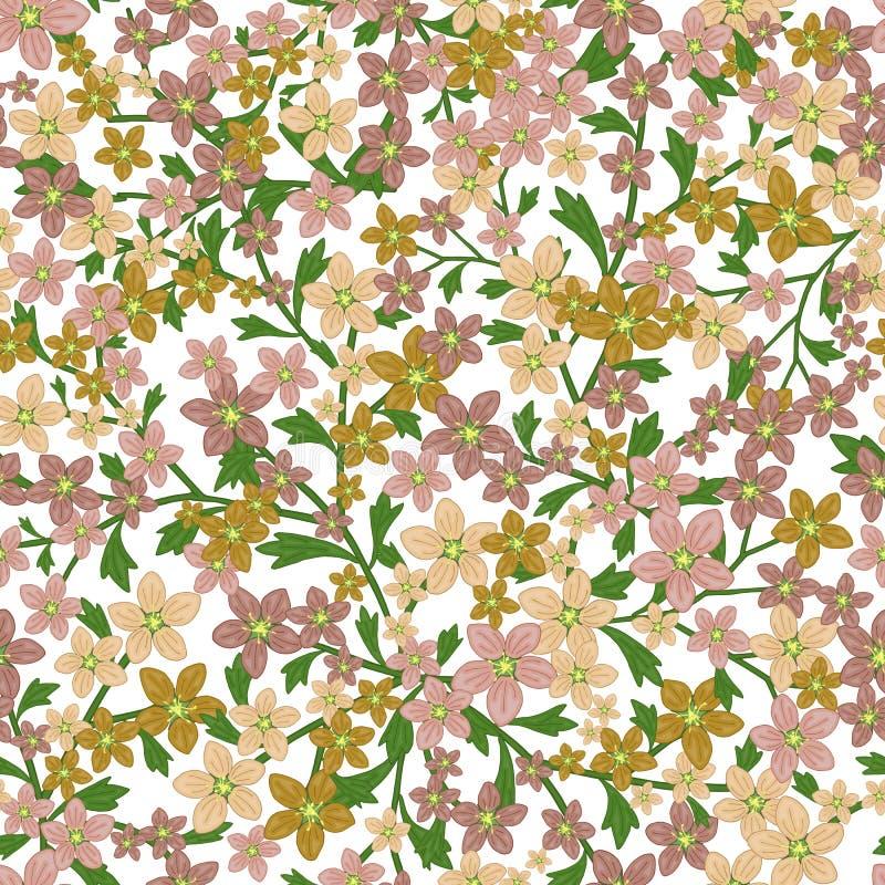 Nahtloses Retro- Muster des Vektors, Blumenwiesensteinbrech Füllen, Tapete, Oberflächenbeschaffenheiten stock abbildung