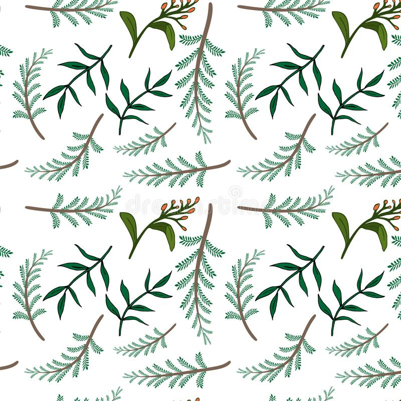 Nahtloses verziertes Blumenmuster Getrennte vektorabbildung Natürliche Auslegungelemente lizenzfreie stockbilder