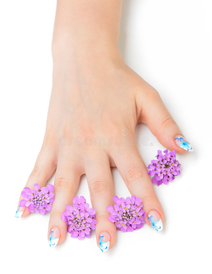 Download Nail art and flower stock image. Image of finger, health - 25646741