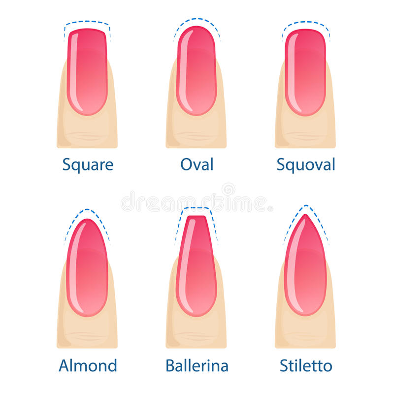 Set of nails shapes stock vector. Illustration of design - 98521987