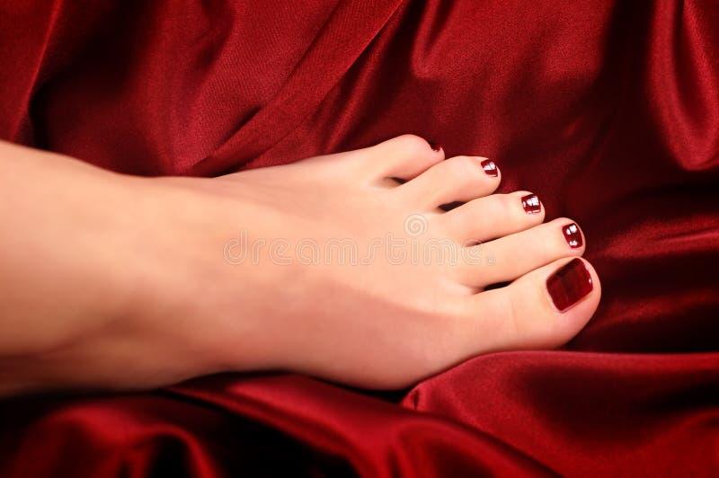 Download Nail polish stock photo. Image of girl, cosmetics, paints - 2039344