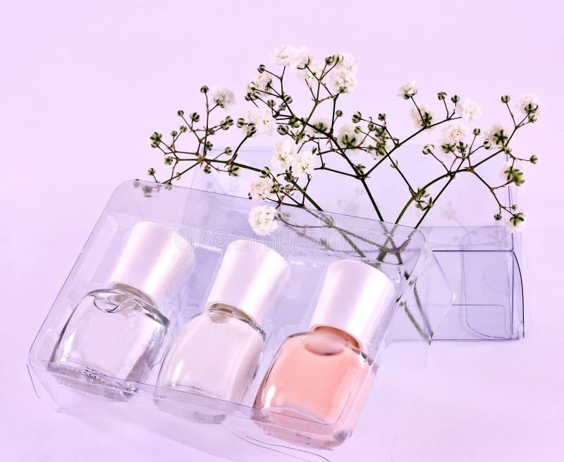 Download Nail polish kit stock image. Image of cosmetic, polish - 27294503