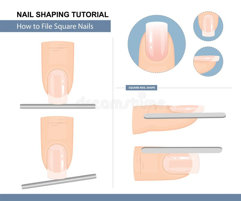 Nail Shaping Tutorial. How to File a Square Nail Shape. Step by Step Instruction. Vector. Illustration stock illustration