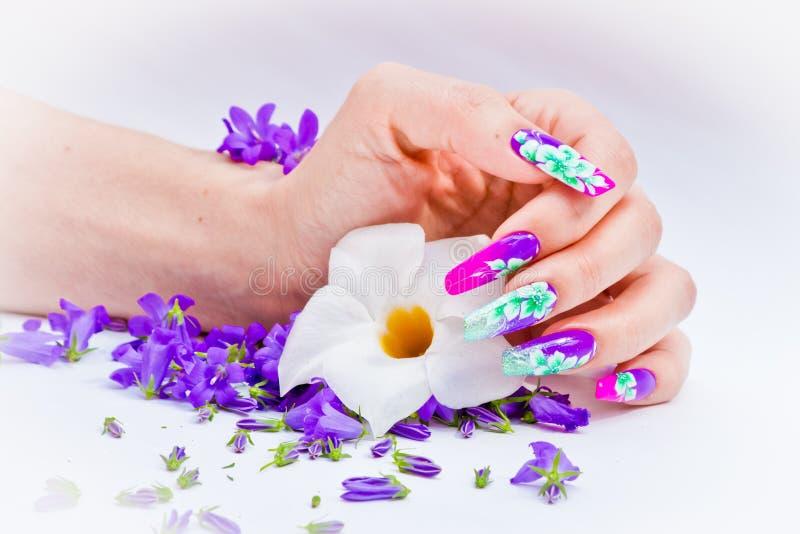 Nails dekorerade med blom- ordningar för en färgrik vår a royaltyfria bilder